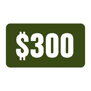 Voucher $300